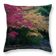 Litha Park Ashland Oregon Throw Pillow