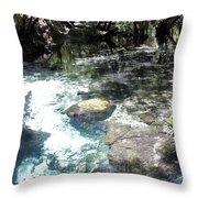 Lithia Springs Throw Pillow