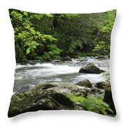 Litltle River 1 Throw Pillow by Marty Koch