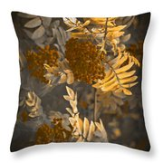 Litthe Creatuions Throw Pillow