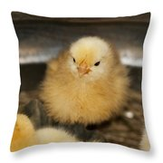 Little Baby Peep Throw Pillow