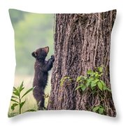 Little Bear Big Tree Throw Pillow