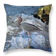 Little Blue And A Splash Throw Pillow