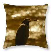Little Blue Heron In Golden Light Throw Pillow
