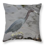 Little Blue Heron Walking Throw Pillow
