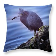 Little Blue Throw Pillow by Joseph G Holland