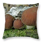 Little Brown Mushrooms In Moss Throw Pillow