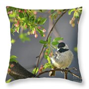 Little Chickadee In The Pink Throw Pillow