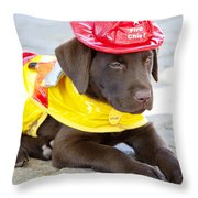 Little Chief Lab Pup Throw Pillow