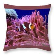 Little Clown Fish Throw Pillow