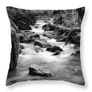 Little Creek 3 Bw Throw Pillow