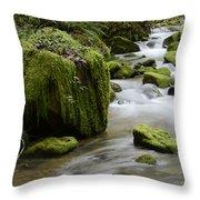 Little Creek 5 Throw Pillow