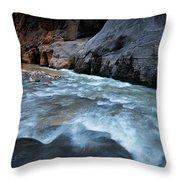 Little Creek Throw Pillow