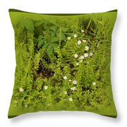 Little Daisy Throw Pillow