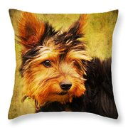 Little Dog II Throw Pillow by Angela Doelling AD DESIGN Photo and PhotoArt