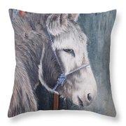 Little Donkey-glin Fair Throw Pillow
