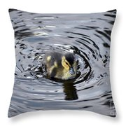 Little Duckling Goes For A Swim Throw Pillow