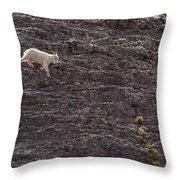 Little Explorer Throw Pillow