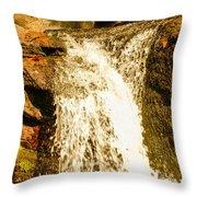 Little Falls Throw Pillow by Tom Zukauskas