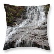 Little Falls Two  Throw Pillow