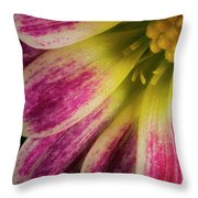 Little Flower Quadrant Throw Pillow