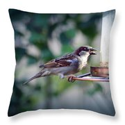 Little Friend Visitor Throw Pillow