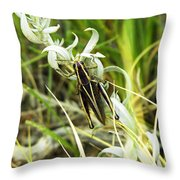 Little Grasshopper Throw Pillow