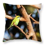 Little Green Bee Eater On A Branch Throw Pillow
