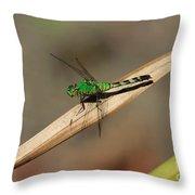 Little Green Friend Throw Pillow