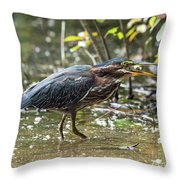 Little Green Heron With Fish Throw Pillow
