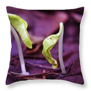Little Green Sprouts  Throw Pillow