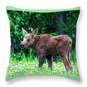 Little Grinder Throw Pillow