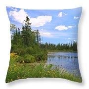 Little Iron Lake Throw Pillow