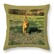 Little Lion Throw Pillow
