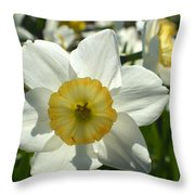 Little Miss White 1 Throw Pillow