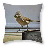 Little Mother Throw Pillow