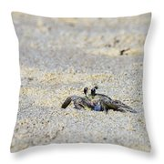 Little Nag's Head Crab Throw Pillow