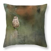 Little Owl On A Fence Throw Pillow