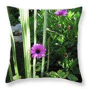 Little Paradise Throw Pillow