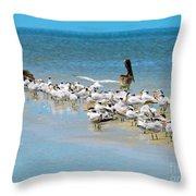 Little Pavilion Residents Throw Pillow