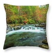 Little Pigeon River Flows In Autumn In The Smoky Mountains Throw Pillow