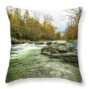 Little Pigeon River Greenbrier Area Of Smoky Mountains Throw Pillow