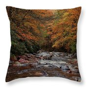 Little Pigeon River In Autumn Throw Pillow