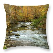 Little Pigeon River In Fall Smoky Mountains National Park Throw Pillow