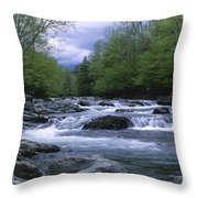Little Pigeon River Throw Pillow