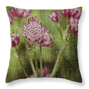 Little Pink Jewels Throw Pillow