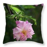Little Pink Throw Pillow