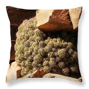 Little Places Throw Pillow