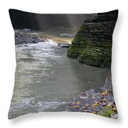 Little Ray Of Sunshine Throw Pillow
