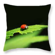 Little Red Ladybug On Green Leaf Throw Pillow by Christina Rollo